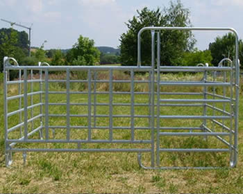 Three galvanized panels and gate make box with feeding place