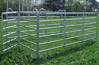 5 galvanized panels and 1 gate make temporary box at ranch