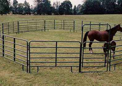 Green powder coated round pipe panels used as pen for horse