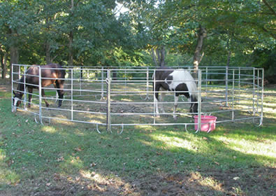 Galvanized round pipe horse corral panels pen for horse