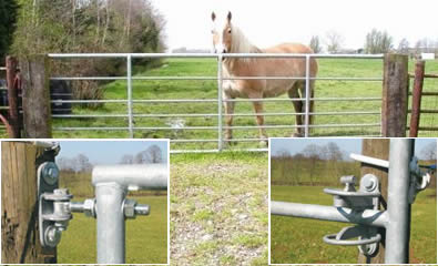 Type 1 gate keeps horse in ranch and accessories detail