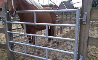 A horse encircled in mesh horse fence gate with wood fence panel