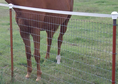 No Climb Horse Fence With Wood Posts And T Posts