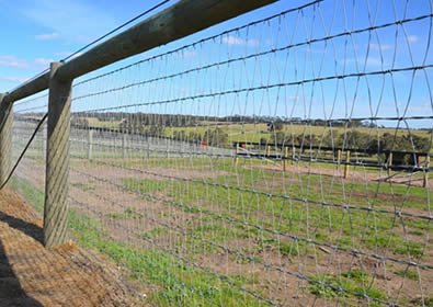 V-mesh horse fence installed with round post to protect environment