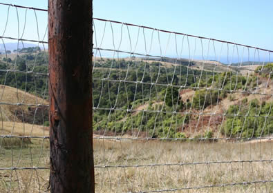 V-mesh horse fence installed with round wood post on hill